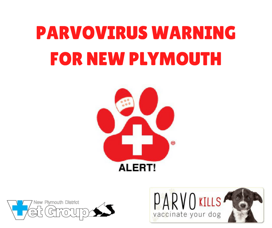 WARNING FOR DOG OWNERS IN NEW PLYMOUTH JANUARY 2018 – PARVOVIRUS