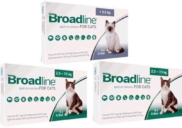 Broadline 3 Pack Bundle Offer New Plymouth Vet Group