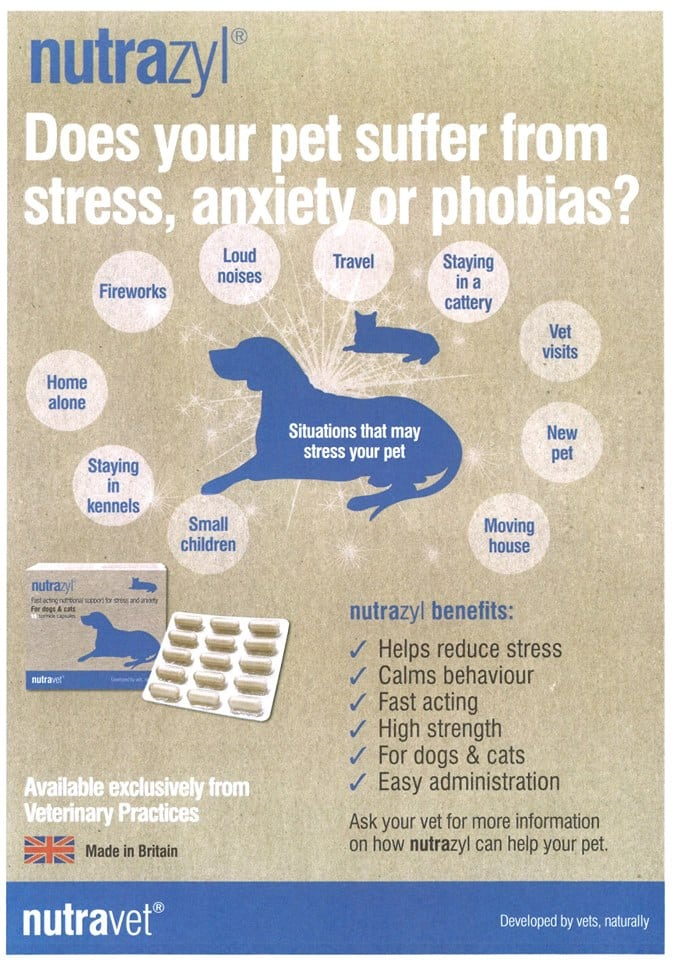 NUTRAZYL Fast Acting Nutritional Support For Stress And Anxiety For Dogs And Cats