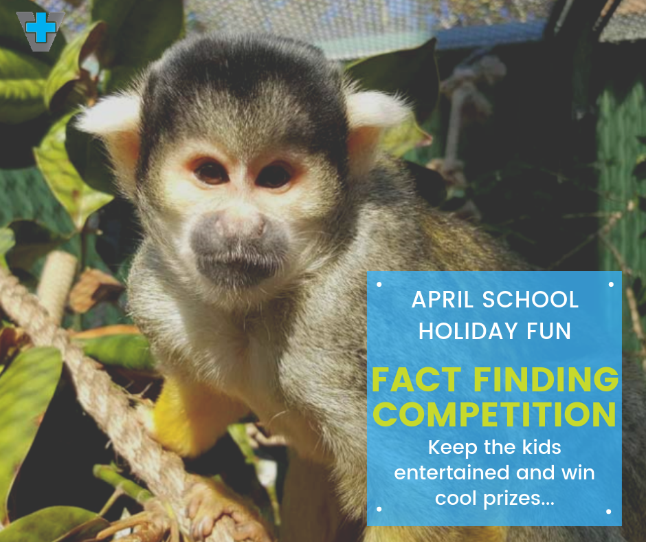Kids School Holiday Fun Fact Finding Competition April 2019