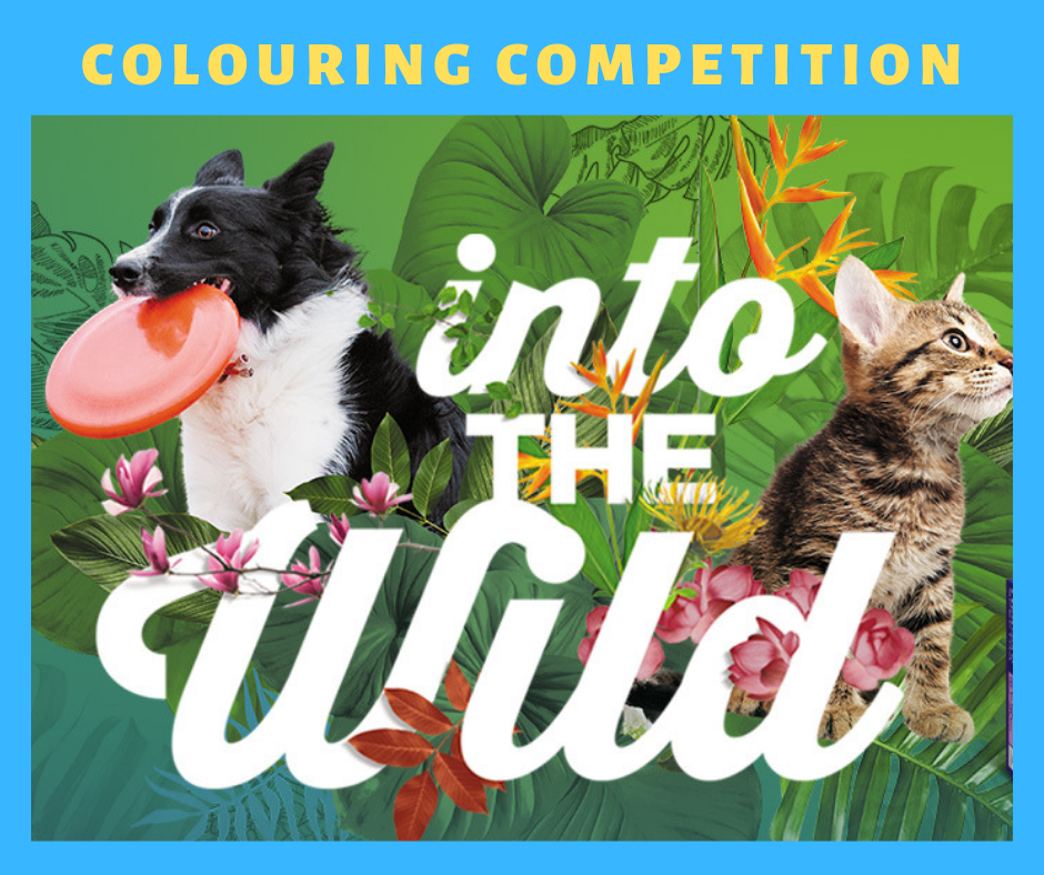 COLOUR & WIN – Colouring Competition