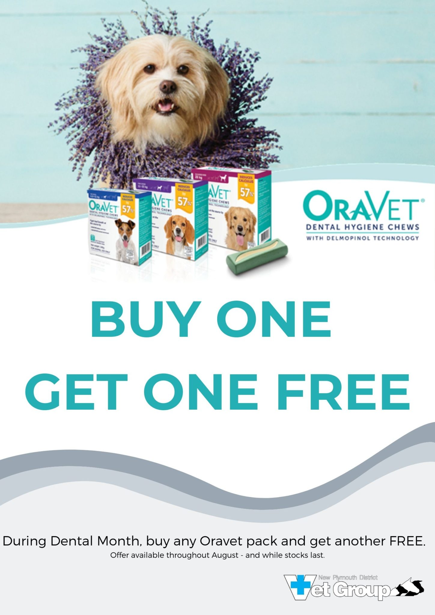 BUY ONE GET ONE FREE With Oravet