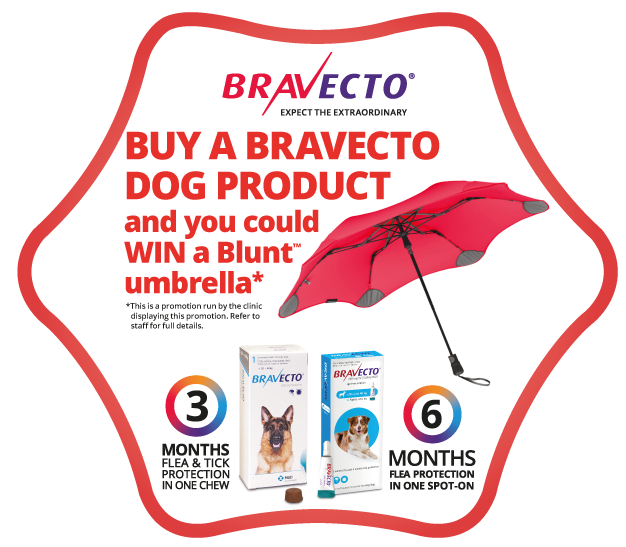 WIN A Blunt Metro Umbrella Worth $99 With Bravecto
