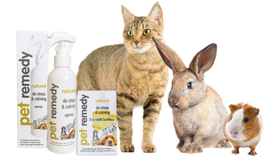 NEW PRODUCT ALERT – Pet Remedy Natural De-Stress And Calming Solution