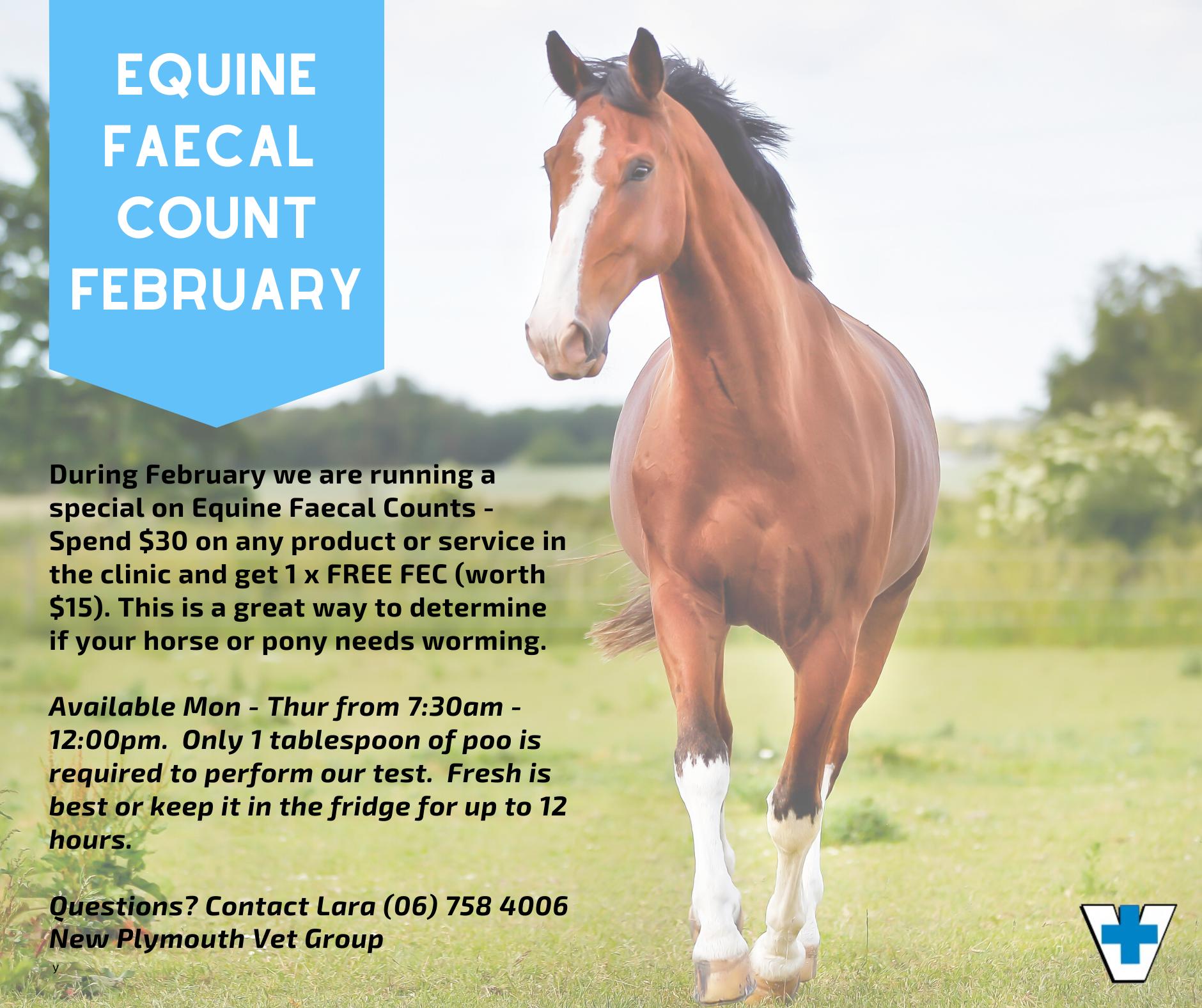 EQUINE – FAECAL COUNT FEBRUARY