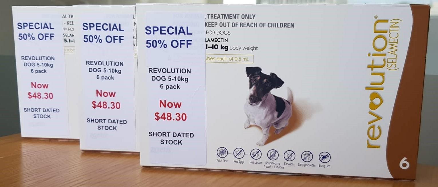 Revolution Dog 5-10kg 6 Pack – 50% Off