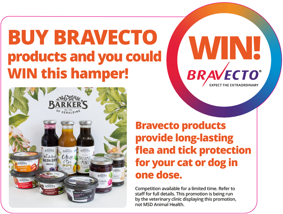 Buy Bravecto And You Could Win A Barkers Hamper!