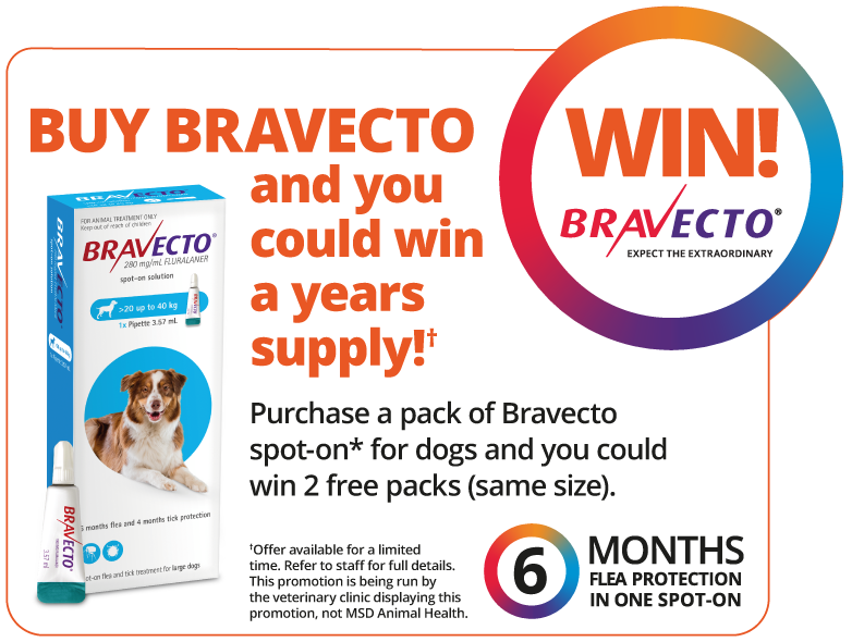BUY BRAVECTO And You Could Win A Years Supply*