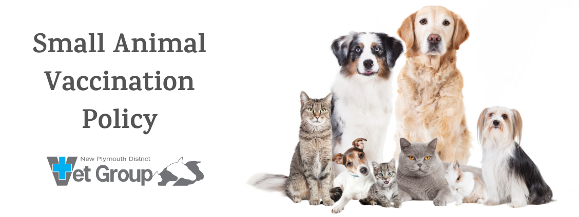 Small Animal Vaccination Policy